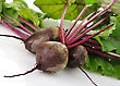 Fresh Beet Roots With Leaves On White Background stock photography