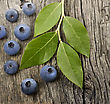 Fresh Bilberries On Wooden Background stock photography
