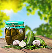 Fresh And Canned Pickles And Garlic On A Background Of A Summer Day stock photo