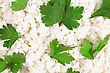Fresh Cottage Cheese (curd) Heap With Parsley, Isolated On White Background stock image