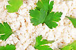 Fresh Cottage Cheese (curd) Heap With Parsley, Isolated On White Background stock photo