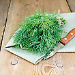 Fresh Green Dill On A Napkin With A Knife On The Background Of Wooden Boards