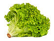 Fresh Green Lettuce Isolated On A White Background stock photo