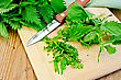 Fresh Green Nettle Incised On A Wooden Board With A Knife And Napkin stock photo