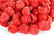 Lush Fresh Raspberry Closeup stock photo