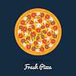 Pizza Fresh Salami Pizza. Flat Style Vector Illustration Of Healthy Pizza stock vector