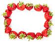 Fresh Strawberries Frame stock photography
