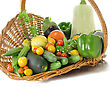 Fresh Vegetables From Garden stock image