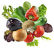Fresh Vegetables And Salad Leaves Isolated On White Background stock photography