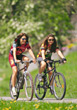 Friends Taking Bike Ride stock photography