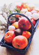 Fruit Basket With Apples stock image