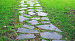 Garden Stone Path With Grass Growing Up Between The Stones. stock photography