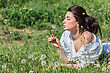 Girl With Dandelion Lying On Green Grass stock photography