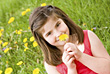 Girl in a Dandelion Field stock photo