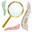Golden Magnifing Glass With Vintage Feathers
