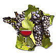 Grapes And Vines With A Glass Of Red Wine Map Of France During Harvest stock photo