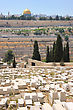 Graves On The Mount Of Olives And View On The Jerusalem. stock photography
