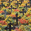 Graveyard With Flowers stock photo