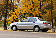 Gray Car On Autumn Leaves Background stock image