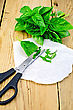 Green Basil With Scissors On Paper On The Background Of Wooden Boards stock photo