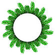 Green Fir Circle Frame Isolated On White Background stock vector