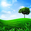 Green Hills Under The Blue Sky, Natural Backgrounds For Your Design
