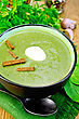 Green Soup Puree In Bowl With A Spoon On Napkin, Parsley, Spinach, Croutons, Garlic And Pepper On Wooden Board stock photo
