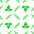 Green Soybeans Seamless Pattern Isolated On White Background