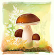 Group Of Ceps In The Forest. Watercolor Style. stock illustration