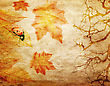 Grunge Abstract Fall Background With Branches And Colorful Leaves