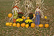 Halloween Display Minnesota Pumpkin Scarecrow Corn Maize stock photography
