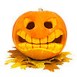 Halloween Pumpkin And Leaf stock image