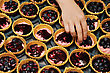 Hand Adding Blueberries To A Tray Of Blueberry Tarts stock photography