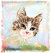 Hand Drawn Portrait Of The Fluffy Cat stock illustration