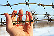 Barbwire Hand Of Prison And Sky Background stock photography