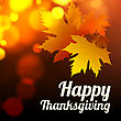 Happy Thanksgiving Vector Background With Autumn Leaves