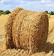 Haystack In A Field Of Culture stock image