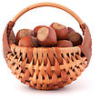 Tough Hazelnuts In Wicker Basket Isolated On White Background stock photo