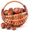 Hazelnuts In Wicker Basket Isolated On White Background stock photography