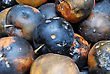 Heap Of Rotting Apples Of Various Forms Background