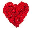 Heart Shape Made Out Of Rose Petals Isolated On White stock photography