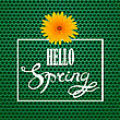 Hello Spring Lettering Design.Green Banner With A Textured Carbon Grid Background And Text In Square Frame
