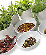 Herbs And Spices Assortment In White Dish stock photo