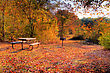 High Dynamic Range Image Of A Campsite Volleyball And Picnic Area