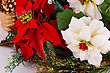 Holly Berry Red And White Flowers Closeup Image