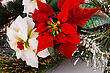 Newyear Holly Berry Red And White Flowers Closeup Image stock image