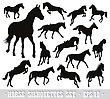Horses Detailed Vector Silhouettes Set. EPS 10