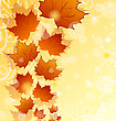Autumn Floral Background With Maple Leaves stock illustration