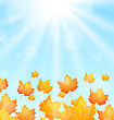 Illustration Autumn Flying Maples In Blue Sky - Vector