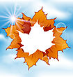 Illustration Autumn Leaves Maple With Copy Space - Vector